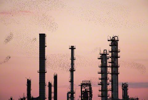 Refinery-Flock-07