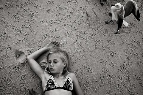 Natalie Grono Sea Dreaming