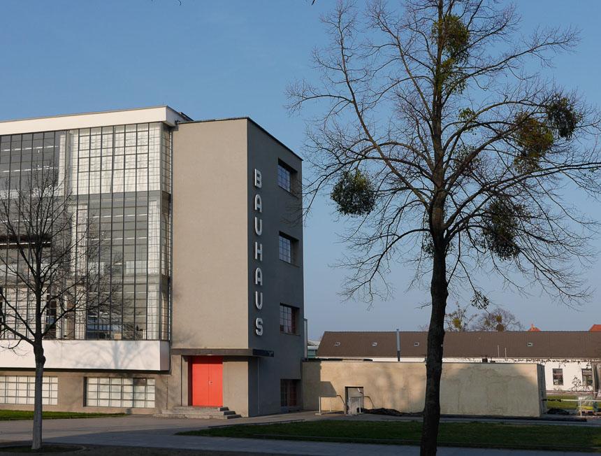 Bauhaus mit Baum
