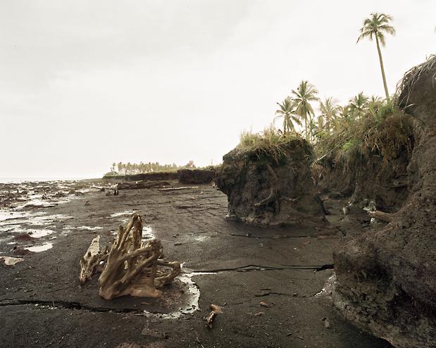 erosion_after_logging_of_mangroves